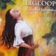 Ligloop Book